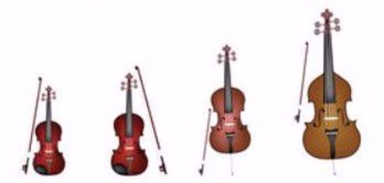 Picture of S1800 - Adult String Class