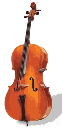Picture of S2100 -Study Class - Cello/ Bass
